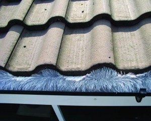 Flat and Pitched Roof Repairs